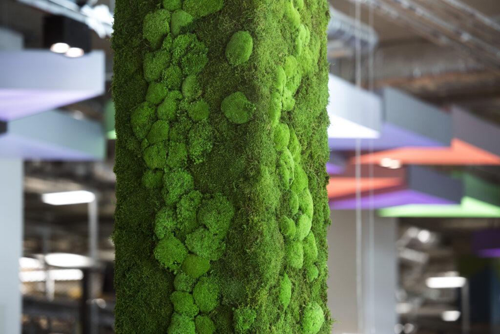 living moss at Plexal